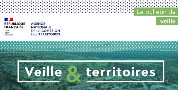 Veille & territoires - Bulletin de veille ANCT